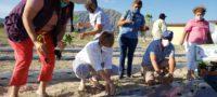 Arrancan huertos familiares en Cuatro Ciénegas