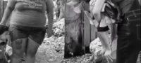 Rommel Pacheco solidario: ayuda a población