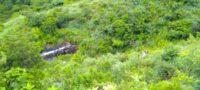 Autobús de pasajeros cae a barranco en Chiapas; hay un muerto y 30 heridos