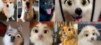Transforma a tus perros en personajes de Disney con SnapChat