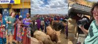 Tunden a Luisito Comunica por irresponsable al viajar a EU y recorrer África en plena pandemia
