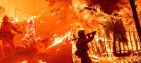 Record: Voraces incendios dejó más de 800 mil hectáreas calcinadas en California