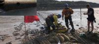 Hallan bomba altamente explosiva de la Segunda Guerra Mundial en una playa de Inglaterra