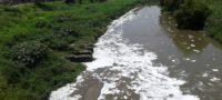 CONAGUA debe entregar escritos sobre contaminantes en la cuenca Lerma-Chapala; INAI