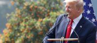 Evade Trump impuestos; sólo ha pagado mil 500 dólares desde que es presidente de EU: The New York Times