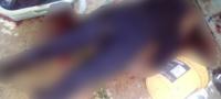 Tres policías muertos y uno herido de gravedad: emboscada en EDOMEX les cuesta la vida