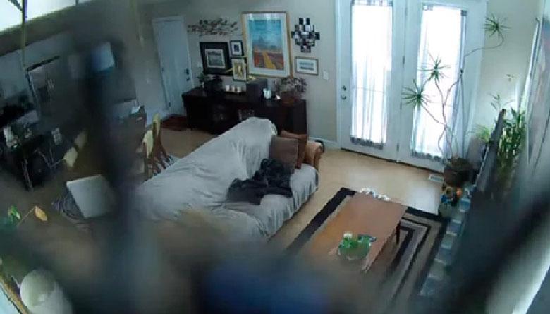 Ciberdelincuentes filtran vídeos íntimos de usuarios robadas de 50 mil cámaras de seguridad doméstica