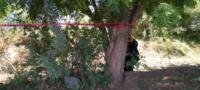 Rastreadores de El Fuerte encuentran fosa clandestina en los Mochis, Sinaloa