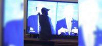GATO ARAÑA IMAGEN DE TRUMP EN TELEVISIÓN
