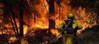 Fuertes ráfagas de viento reavivan catastrófico incendio forestal de Colorado