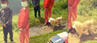 """Niños llevan a perrito con """"cubrebocas"""" a vacunar contra la rabia en Guatemala"""