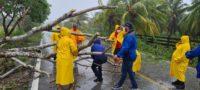 """Lluvias y vientos de la tormenta """"Zeta"""" deja sin luz 59 mil personas en Yucatán"""