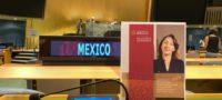 Mexicana es electa como miembro de la Dependencia Común de Inspección