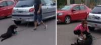 Maltrato animal: encadena maestra a su perro al auto y lo arrastra por siete cuadras