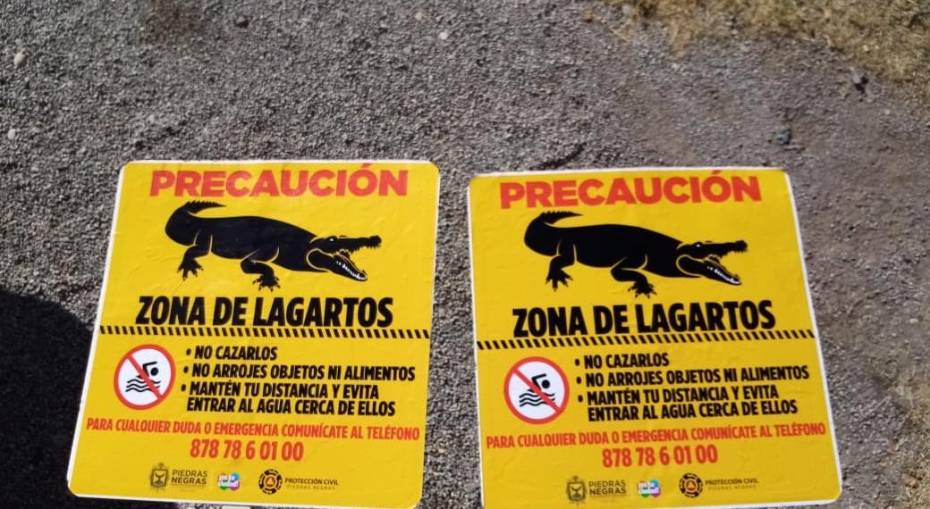 Advierten a inmigrantes no cruzar el Río Bravo por presencia de cocodrilos de más de 3 metros