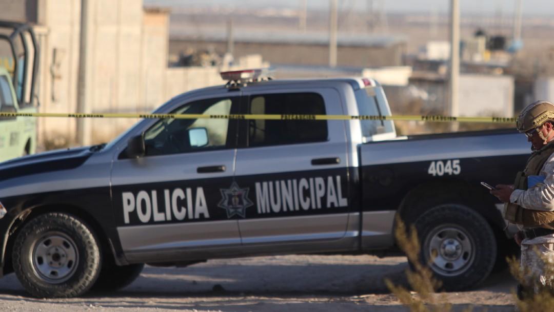 Policiaca: Abandonan cabeza humana en hielera; fue descubierta por perros callejeros