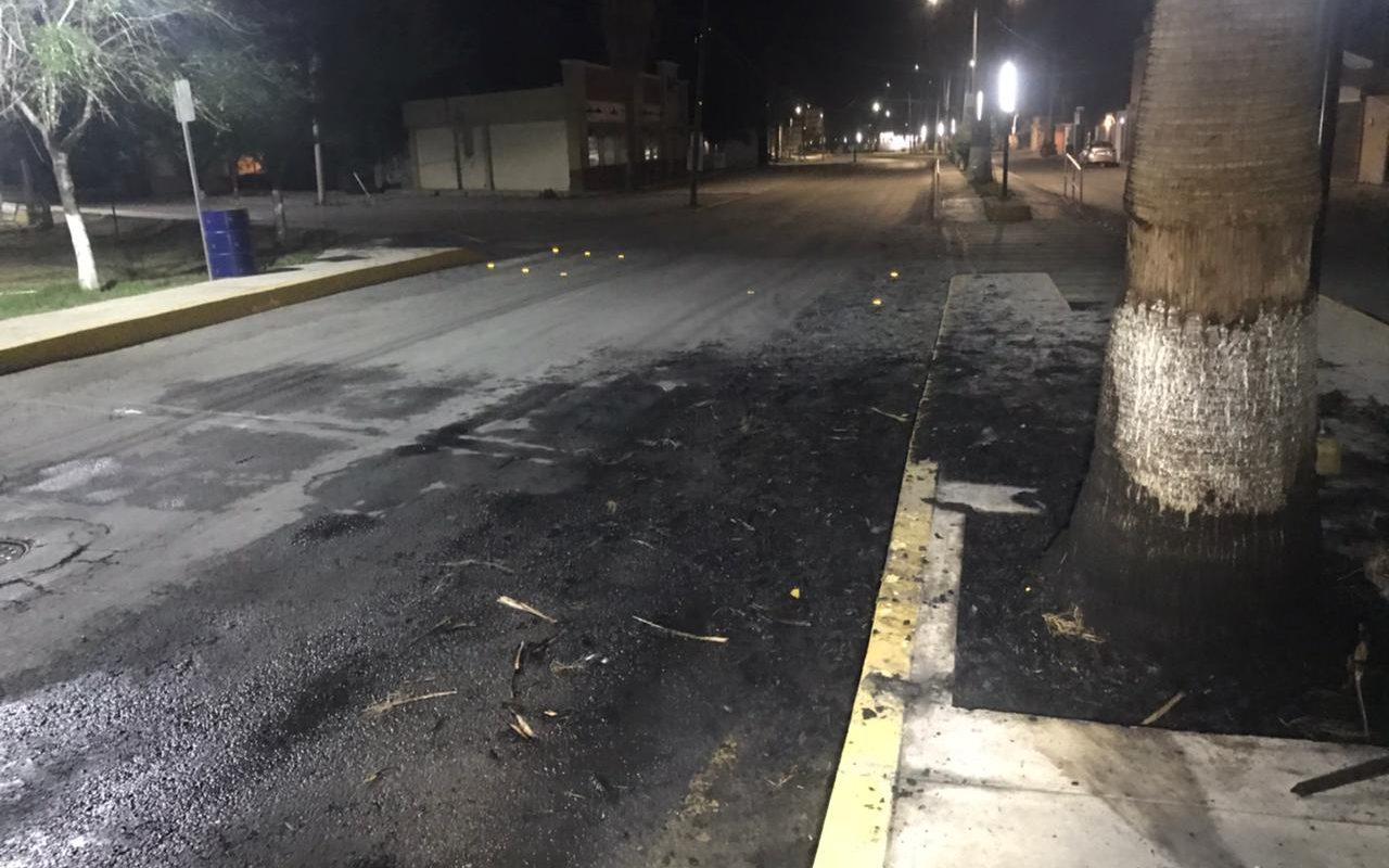 Policiaca: Incendian palma en Paseo Tecnológico de Monclova