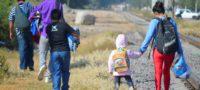 Busca AMLO darle empleo a migrantes: que participen en construcción del Tren Maya