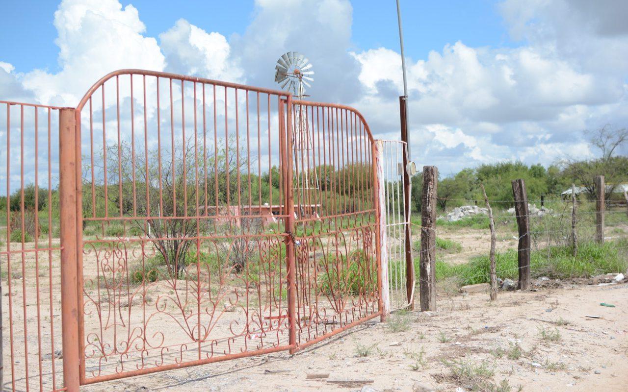 Lluvias Recientes En La Región Centro De Coahuila Favorecen A La Agricultura