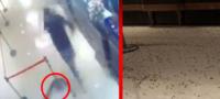 Hombre lanza más de mil cucarachas al interior de un restaurante; debían dinero a organización criminal