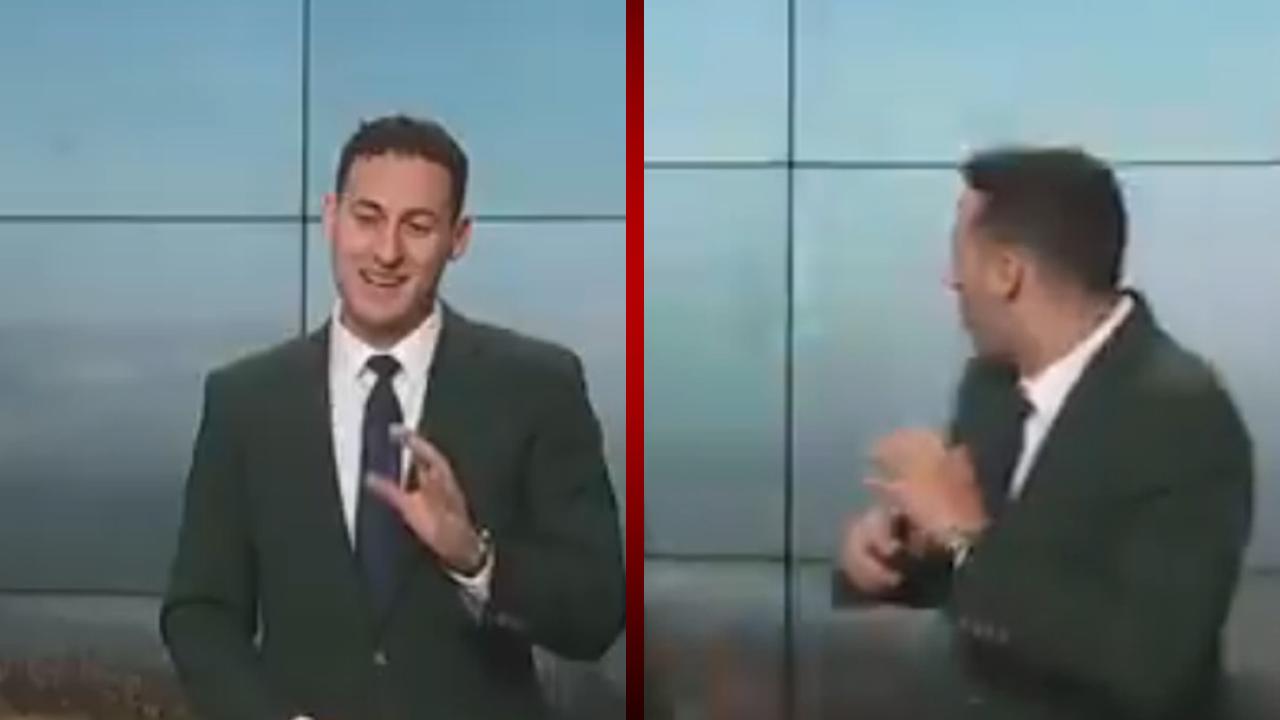 Un pájaro le da el susto de su vida a un reportero en plena transmisión en vivo