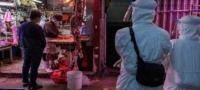 Continúa venta de animales vivos para consumo en Wuhan, ciudad donde surgió la pandemia