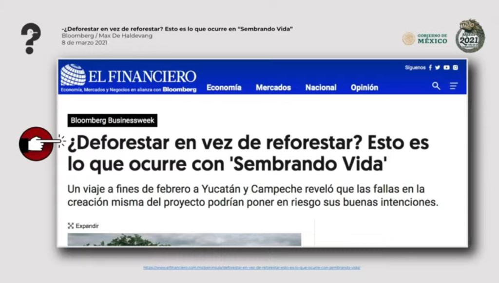 Quién es quién en las 'fake news' de AMLO: 'Sembrando Vidas' no causa deforestación ni falsean datos