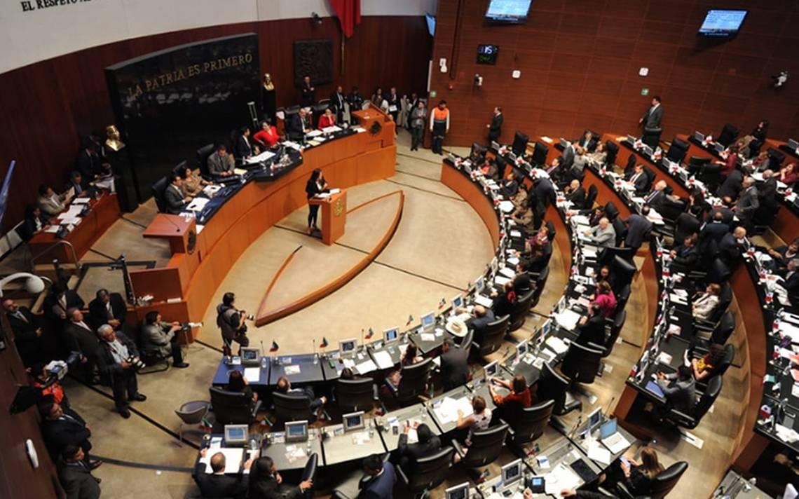 Presidente del Senado prepara reforma para impartir justicia digital