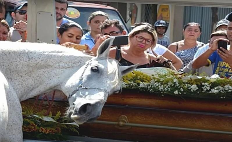 ¡Insólito! Caballo llora la muerte de su dueño en pleno funeral; no quería separarse del ataúd