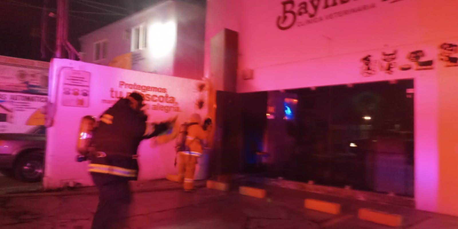 Bomberos rescataron a 15 animalitos de un incendio en una veterinaria