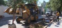 San Buenaventura trabaja en la reforestación de la Alameda Juárez