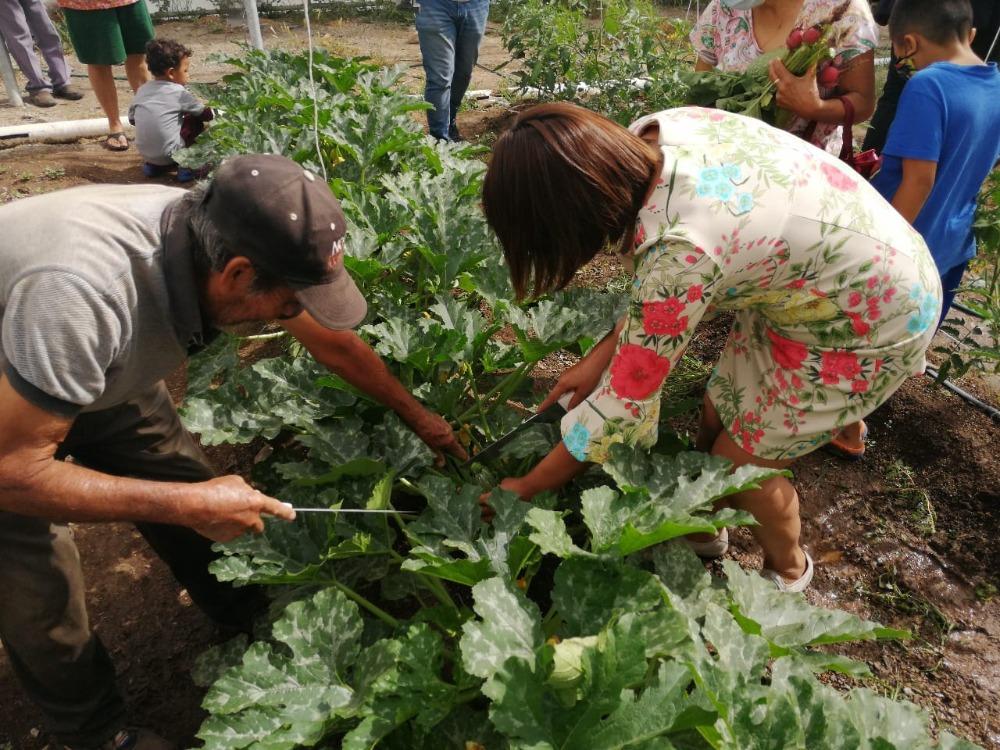 Se reactiva huerto comunitario en alianza con asociaciones civiles y comunidad de Saltillo