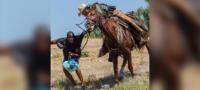 Oficiales fronterizos cazan a migrantes haitianos al estilo Western: que abusones