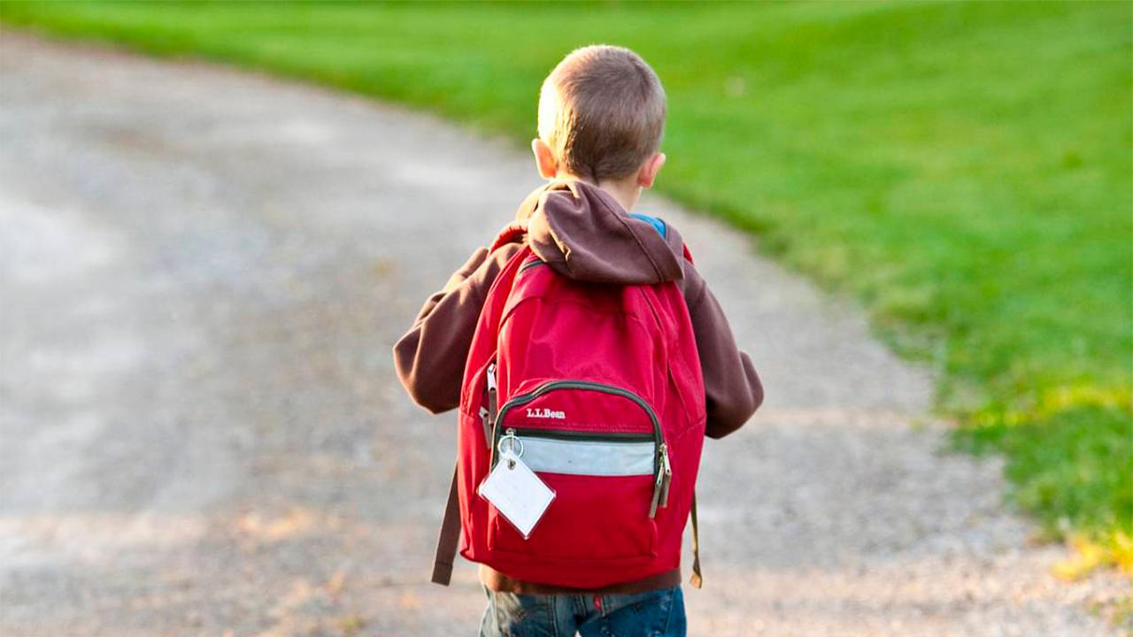 Niño fue encontrado caminando solo en la carretera: Conductor lo rescató
