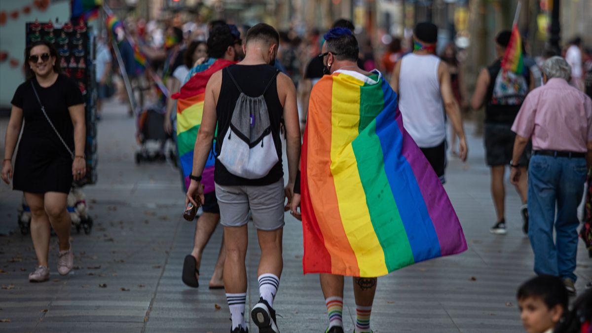 Francia prohíbe terapias de conversión de homosexuales